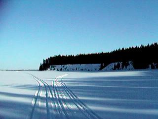 talvi9
